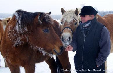 dichtes Winterfell schütz und die frische Luft hält Gesund