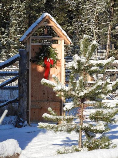 Weihnachts-Grüsse von unseren Freunden aus Kanada BC, Wolf Valley Ranch BC