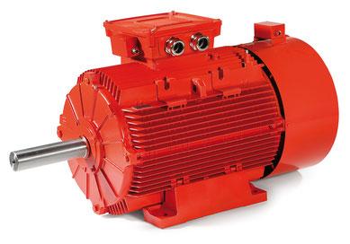 Motoren Serie G - ELECTRO ADDA S.p.A. - TECHTOP ADDA MOTOR GmbH