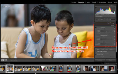 Lightroom and it's easy to understand user interface