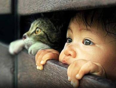 Redevenir comme un enfant - à la fois curieux et intéressé -