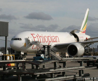 The Belgian Airports Brussels and Liege are the main European hubs of Ethiopian Cargo