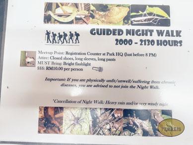 Nachtwanderung Bako Nationalpark
