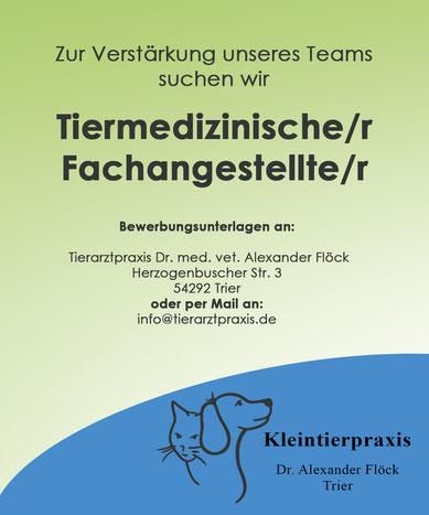 Stellenangebot Tierarztpraxis Dr A Flöck In Trier