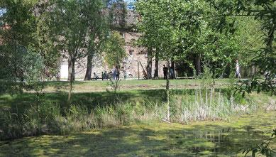 Blick über den Teich zum Spielplatz.