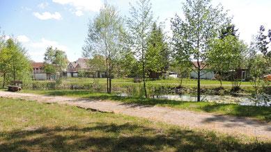 Ein Blick zum neu gestalteten Teich