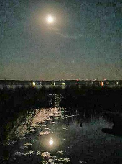 Dunkel war`s, der Mond schien helle........