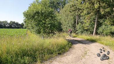 Fahrradtour durch die Kaltenkirchener Heide