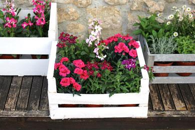 La Silvestre-decoración floral Santander