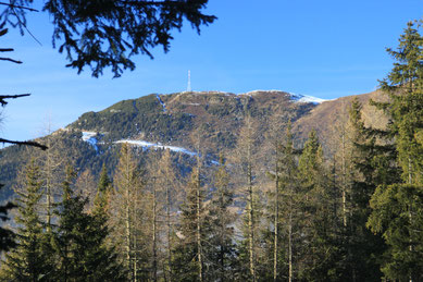 Blick zum Venet Gipfel