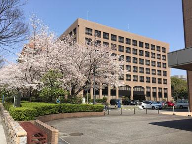 名古屋家庭裁判所