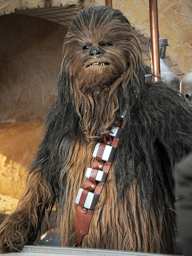 Kein Wookie, sondern ein Star-Wars-Fan, der unter der Corona-bedingten Zwangschließung seines Friseurs leidet.
