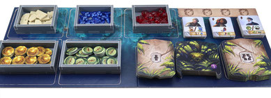folded space insert organizer lost ruins of arnak