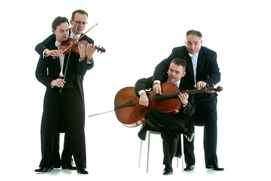 mozart group contact