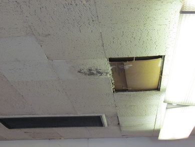 Ceiling repairs will be necessary before leasing this space.