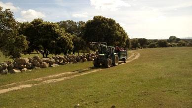 Visita a la ganadería