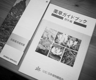 スキンケア素材を探す旅-京都編-