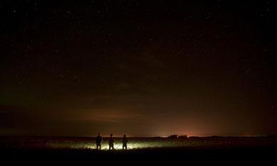 Sternenklarer Nachthimmel