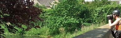 Radeln in belg. Limburg: Hier gibt es viel zu entdecken