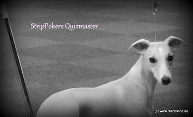 """Unsere """"bessere Hälfte"""" Strippoker´s Quizmaster aka Magic"""