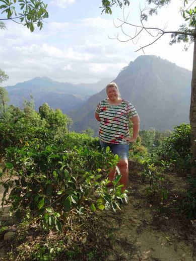 Beklimming Little Adam's Peak in Ella