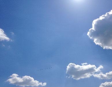 Blauer Himmel, an den Rändern einige Wolken, oben weiße Strahlen der Sonne. Symbolbild für Workshops und Einzelcoaching von Laelia Kaderas zu The Work von Byron Katie