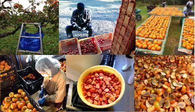 柿の神髄の作り方:仕込み