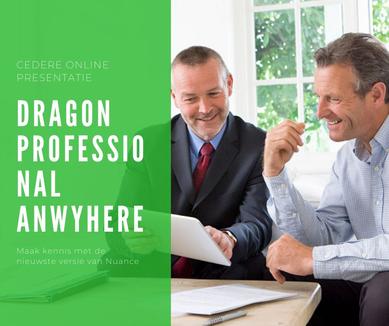 Dragon Professional Anyhwere