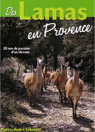 Des Lamas en provence