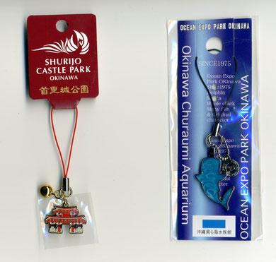 沖縄限定 首里城公園              美ら海水族館
