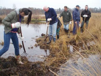 Beispiel für ein  Projekt, dem wir Erfolg wünschen: ein  Wassergraben für einen sicheren Kranichbrutplatz - Nov. 2012