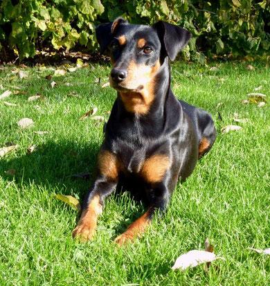 Sally 8 Jahre alt !! (03.11.2011)