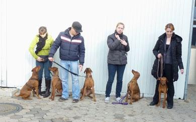 """15.01.2012 Nürnberg, Onnie und einiger ihrer """"Kinder"""" mit stolzen Besitzern !!!"""
