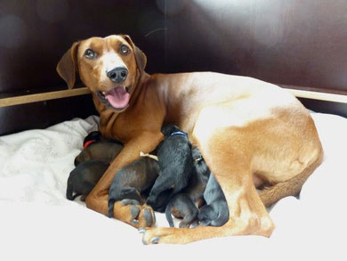 Stolze Mama Onnie am 30.09.2010,  ein paar Stunden, nach der Geburt !!