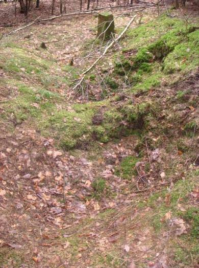 German Foxholes Hill B