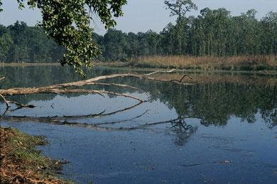 Natur spüren in Nepals Süden