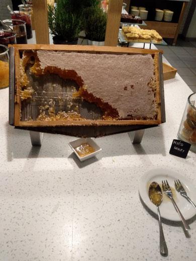 メトロポールホテル 朝食時のミツバチの巣箱