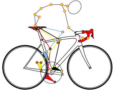 Modélisation cinématique du cycliste - analyse posturale FTC SPORT