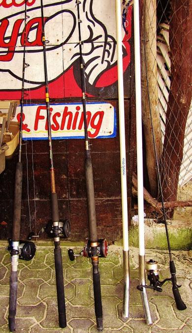 Fishing Trips - Albertos Scuba Playa del Carmen