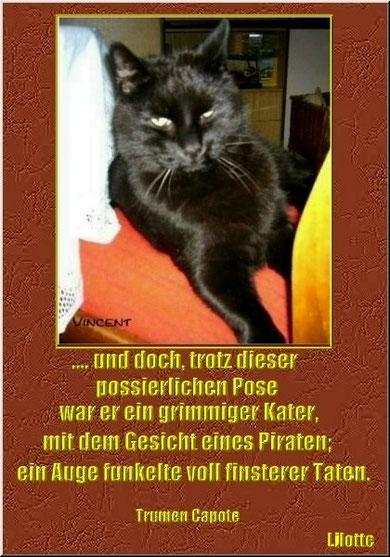 Mein Pirat ....