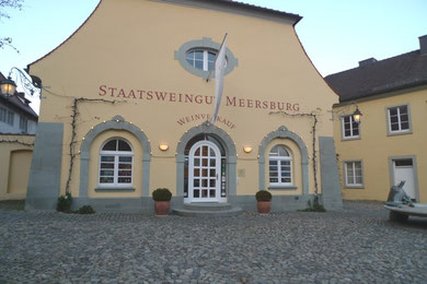 Umgestaltung Verkaufsraum, Staatsweingut Meersburg / Atelier Wilck