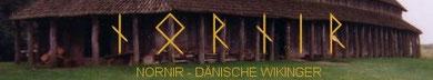 Dänische Wikinger
