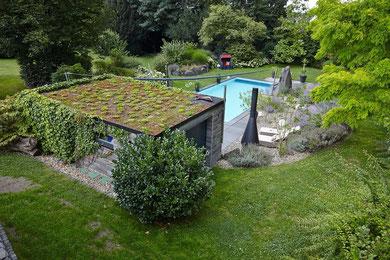 Mineralische Dachbegrünung