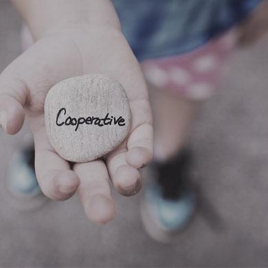 cooperatie coöperatie zorg boekhouder belastingaangifte