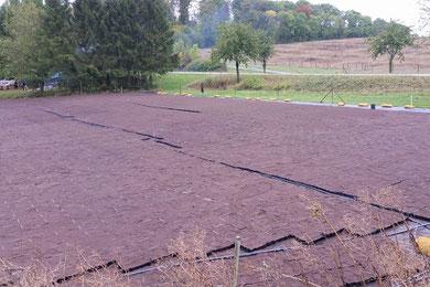 Vegetationsmatten Substrat