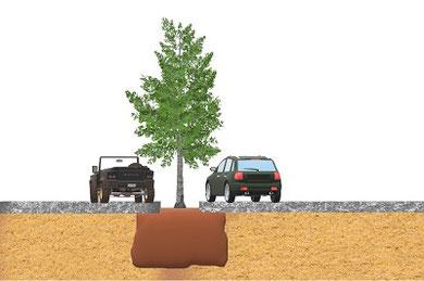 Pflanzgrubenbauweise gemäß FLL 2