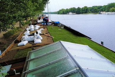 Dachbegrünung Schiff / Hausboot