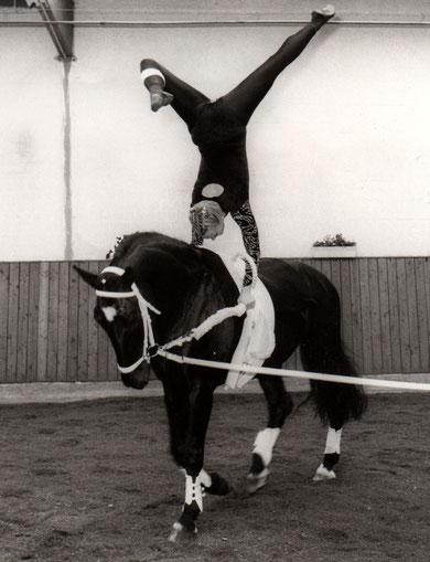 ...auf super Pferdchen Gorbi
