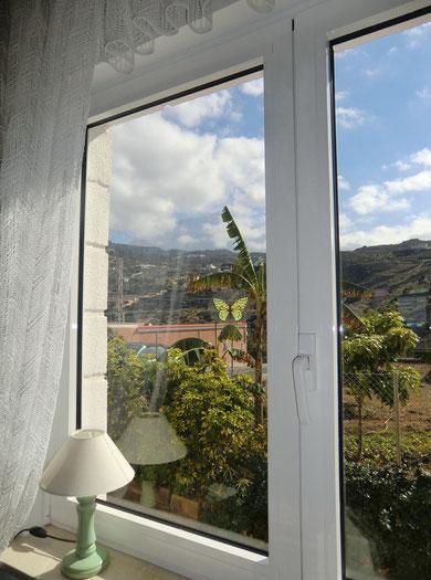 Blick vom Wohnzimer