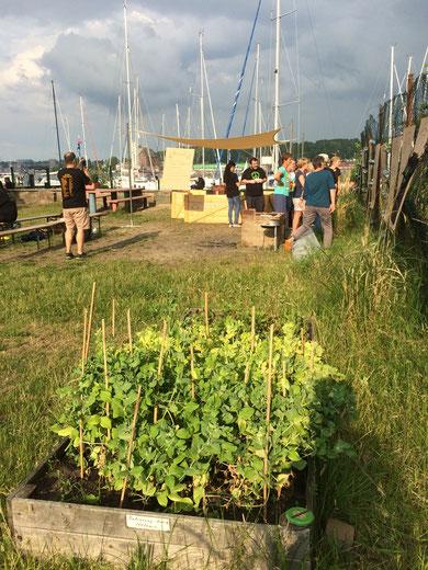 Der temporäre urbane Garten am Wasserplatz